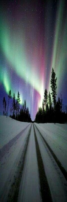 Auroras.