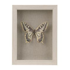 Yellow Butterfly Shadowbox | Kirklands