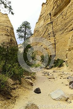 Views while walking the slot canyon trail in Tent Rock National monument in New Mexico.