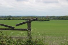 Fields near Wendover Fields, United Kingdom, The Unit, London, England