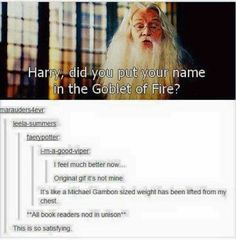 I could not stand the second Dumbledore.  There was no help for it but the first Dumbledore WAS Dumbledore in every sense of the person. I will always see his face when I reread the books.