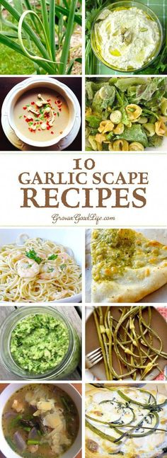 What are garlic scapes and How to Use Them: Over 10 Garlic Scape Recipes shared by fellow bloggers. Enjoy the mild garlic flavor with a hint of sweetness. #smoothierecipes
