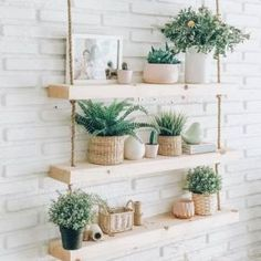 So was the Makemba pretty. Authentic paradise in a corner of the home Bedroom Plants Decor, House Plants Decor, Room Ideas Bedroom, Plant Decor, Diy Bedroom Decor, Diy Home Decor, Plant Wall, Wall Of Plants Indoor, Indoor Plant Shelves