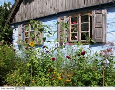 Garden in Polish countryside (from House Rustic Shed, Rustic Style, Garden Cottage, Cozy Cottage, Small Cottages, Country Lifestyle, European Home Decor, Outside Living, The Beautiful Country