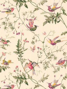 Cole & Son Hummingbirds Wallpaper, Ivory, 62/1001