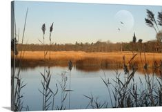 Premium Thick-Wrap Canvas Wall Art Print entitled Seascape of marshlands in northeast of United States., None