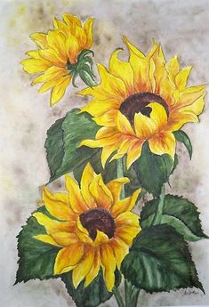 Oil painting Flowers art large format wall art julia kotenko art kathakali paintings on canvas flower petal art Watercolor Sunflower, Sunflower Art, Watercolor Flowers, Watercolor Art, Sunflower Paintings, Simple Watercolor, Watercolor Paintings For Beginners, Easy Paintings, Oil Painting Flowers