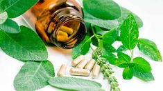 What Foods Are High in Plant Sterols? -It may be possible to lower cholesterol naturally by eating foods high in plant sterols. Lower Cholesterol Naturally, Plant Sterols, Oregano Oil, Dieta Detox, Homeopathic Remedies, Health Remedies, Pole Dancing, Natural Medicine, Loosing Weight