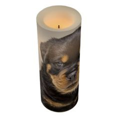 Rottweiler puppy portrait flameless candle - portrait gifts cyo diy personalize custom