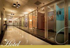 Luxury pet hotel