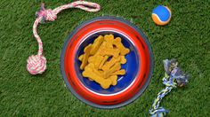 JUST DOG BISCUITS WITH PEANUT BUTTER AND PUMPKIN Ingredients: • 1 cup whole…