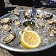 Picnic and shuck your own fresh oysters at this oyster farm in Tomales Bay, about an hour's drive north of San Francisco. Picnic table reservations are $5/person and you need to book far in advance.