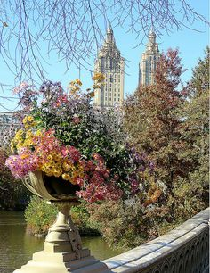 Bow Bridge Central Park, New York City.