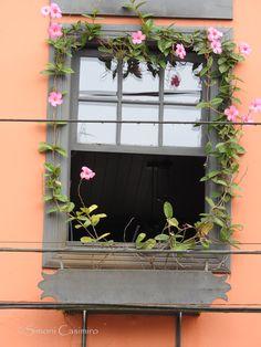 Janela de casarão tombado e restaurado em Nova Veneza, SC, Brasil.