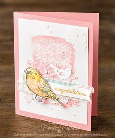 Just in CASE Stampin Up! Best Birds Stamp Set