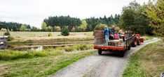 Image result for visit the barn gallery lopez island