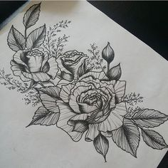 drawing, rose, and black and white afbeelding