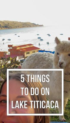 Whatever you do - do not miss Copacabana on the shores of Lake Titicaca in Bolivia