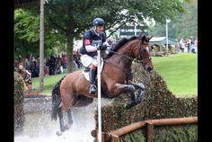 OMG! love this horse- an OTTB!  W. Fox-Pitt & Parkland Hawk at Burghley