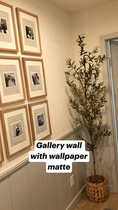 Gallery wall with wallpaper matte