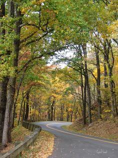 670 south ridge drive perrysburg ohio - Yahoo Image Search Results