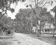 Historical Daytona And Ormond Beach Circa 1904 Ridgewood Avenue Florida The Surrey With