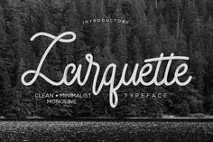 Larquette Typeface font comes with a Premium License which allows Commercial and Personal Use. You can find the license here: