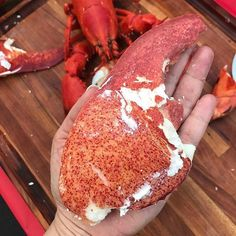 The monster lobster claw!  This picture was my #1 pic on Instagram in 2017!  Thank you all for following along on my culinary adventures.  A woman gave me a card today and on the envelope it read Old things have past.  2018 a new beginning.  Sometimes change is hard but often change is good.  Dont be afraid to always challenge yourself to be better!  You are responsible for your own fate.  Work hard play hard.  Life life to its fullest while you have the ability to to do.  I see so many…