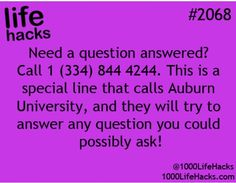 """Call them and ask """"Why is a raven like a writing desk"""""""