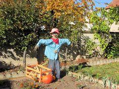 Des jardins d'automne flamboyants