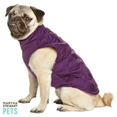 She's no stranger to high-fashion – so keep her up-to-date with the latest trends. Martha Stewart Pets Purple Quilt Coat is the perfect attire for your furry diva friend. #dogcoat