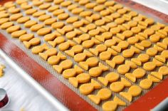 Homemade Goldfish Crackers!!