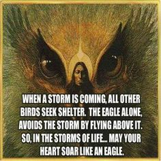 Soar link an eagle during the storms of life #inspirational