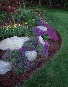 Best Screen Perennials succulents Style One of many excellent pleasures regarding your garden can be luxurious, its heyday perennials. Front Yard Garden Design, Rock Garden Design, Small Backyard Landscaping, Landscaping With Rocks, Simple Landscaping Ideas, Mailbox Landscaping, Rockery Garden, Annual Plants, Planting Succulents