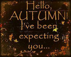 Hello Autumn window