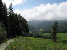 Latzelova stezka krasem Rychlebských hor Mountains, Nature, Travel, Naturaleza, Viajes, Destinations, Traveling, Trips, Nature Illustration