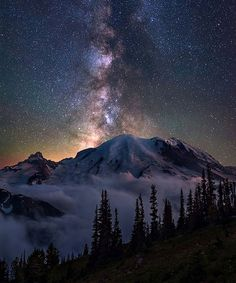 Stunning view of a starry sky Tag a friend who'd love this Mt Rainier National Park  by: @steveschwindt  #gotravelers