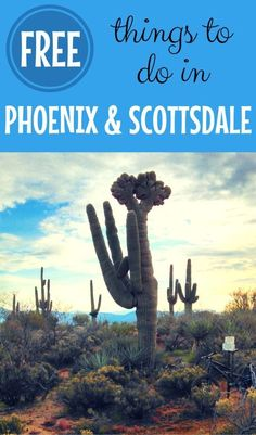 From museums to beautiful desert hikes, find out the best fun and totally free things to do in the Phoenix and Scottsdale, Arizona area for your next vacation. #phoenix #scottsdale #arizona #freein50