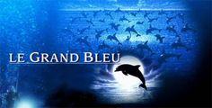 Jacques Mayol: l'uomo delfino - Vita subacquea - NAUTICA REPORT