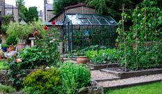 Nice urban garden with greenhouse