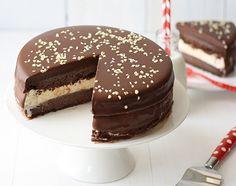 Cumple de Seba Torta helada de chocolate y vanilla