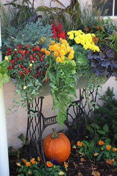 A window BOX mounted on an OLD Singer sewing machine base makes a great AUTUMN display! Fill it with your favorite spring plants! Sewing Machine Tables, Treadle Sewing Machines, Antique Sewing Machines, Sewing Table, Flower Stands, Flower Boxes, Fall Flowers, Garden Inspiration, Garden Art