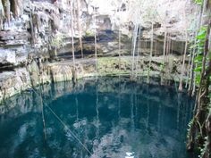 The beautiful cenote and hidden gem of a cenote at Hacienda San Lorenzo Oxman near Valladolid, Yucatan, Mexico -> Read more and see lots of photos on my blog!