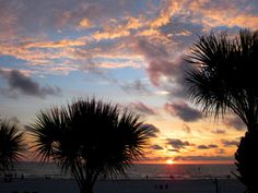 6 Free Family Things in Clearwater, Fla. - Traveling Mom