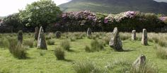 : The Megalithic Portal and Megalith Map: Loch Buie Stone Circle submitted by Tom_Bullock