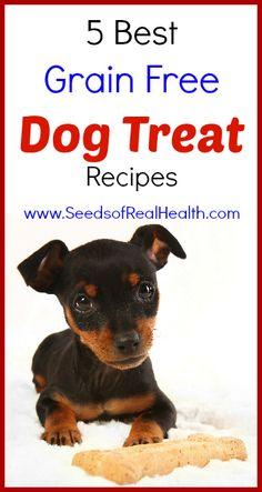 5 Best Grain Free Dog Treat Recipes