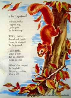 This is a sweet little print featuring the Nursery Rhyme The Squirrel. It shows a seriously cute squirrel scampering down an oak tree. English Lessons, Learn English, Nursery Rhymes Poems, Kids Poems, Nature Poems For Kids, English Poems For Children, Poetry For Kids, Pomes, Finger Plays