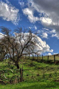 Wagon Wheel Fence, north of Uniontown, WA on Hwy 195