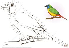 Nativity Coloring Pages, Coloring Books, Stained Glass Patterns, After School, Zentangle, Count, Stitching, Dots, Birds