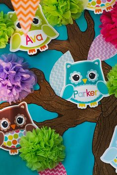 Bright Owl Editable Cut Outs